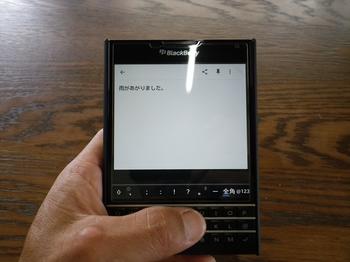 IMGP0087_R.JPG